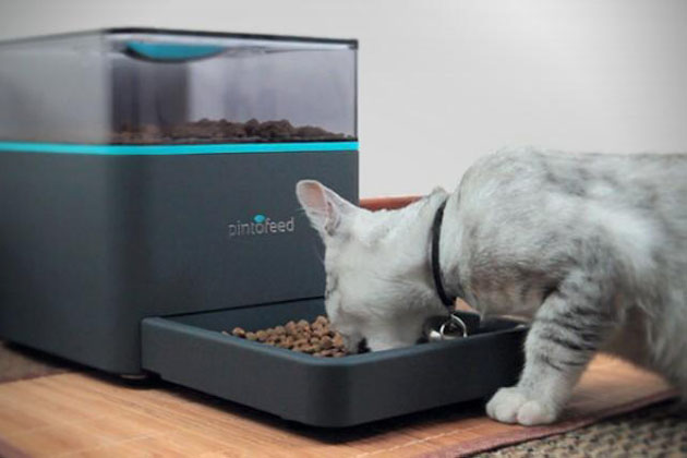 pet feeders reviewed smartti automatic reviews best feeder ensmartech