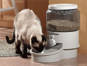 cat food dispenser