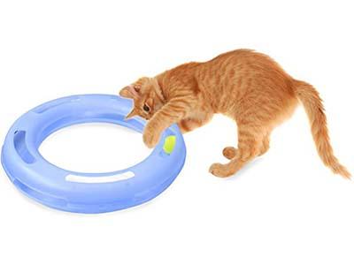 Petmate Fat Cat Crazy Circle Interactive Cat Toy
